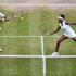Serena Williams sister