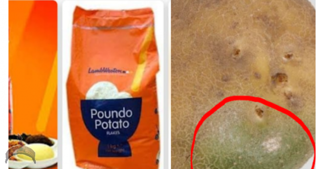 Review Poundo Potato - The Most Racist or Harmful product on the Market ?