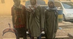 Terrorists Arrested In North