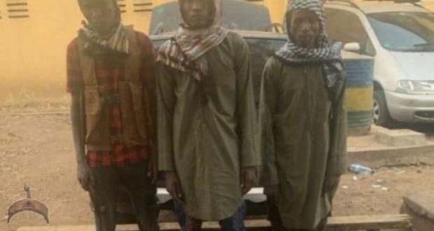 Terrorists Arrested In North