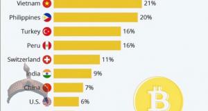 2020 percentage of crypto users